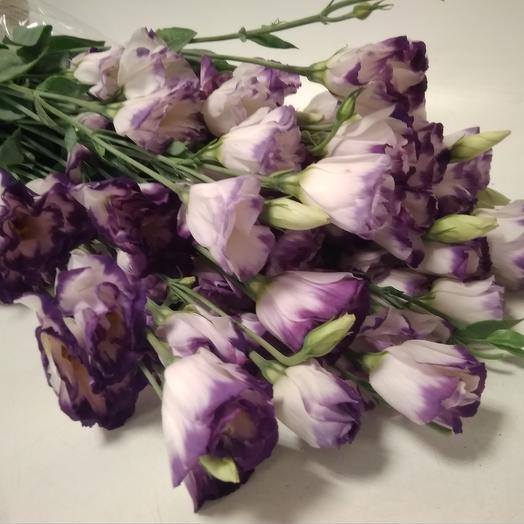 Лизиантус 10 шт: букеты цветов на заказ Flowwow