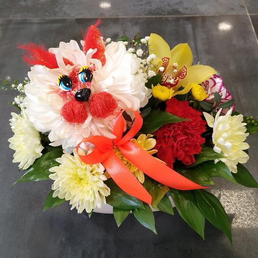 "Композиция ""Котик 😻 в кашпо"": букеты цветов на заказ Flowwow"