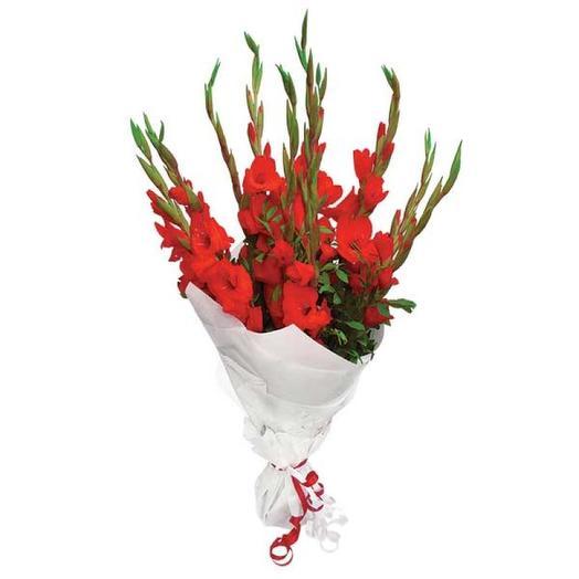 Букет красных гладиолусов: букеты цветов на заказ Flowwow