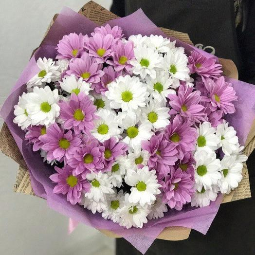 Цветные ромашки: букеты цветов на заказ Flowwow