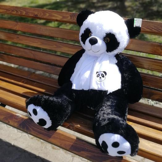✅ Панда 🐼