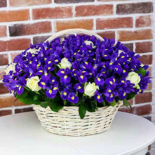 Корзина цветов из 101 синего ириса и 15 белых роз