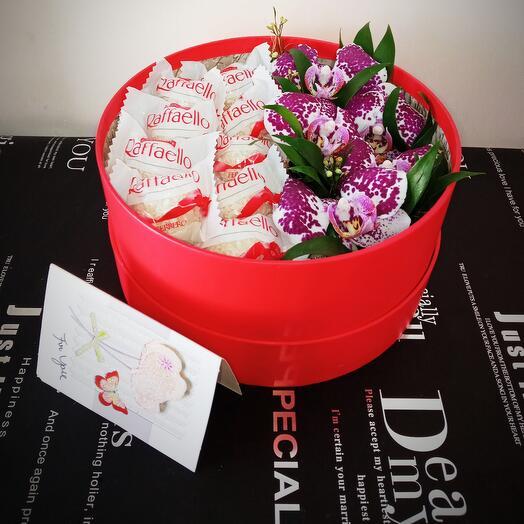 Коробка с орхидеями и раффаэлло