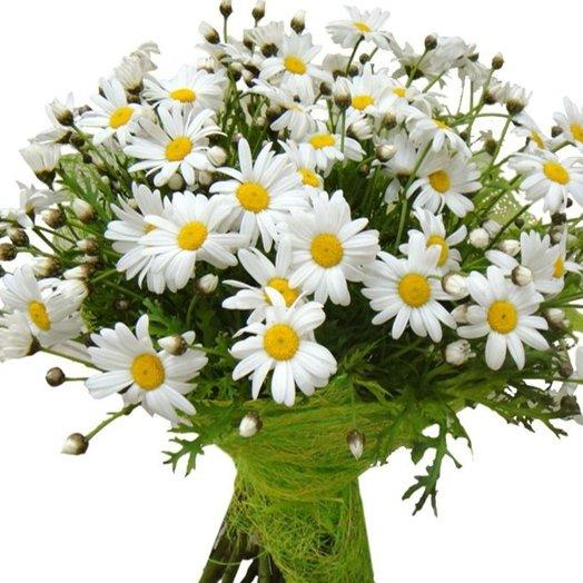 Летний ромашковый: букеты цветов на заказ Flowwow