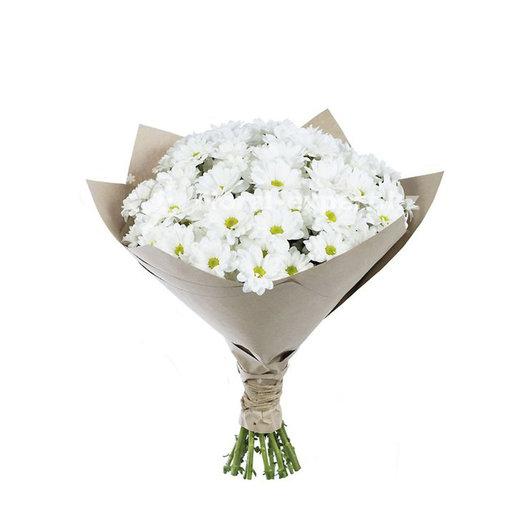 Хризантема кустовая белая: букеты цветов на заказ Flowwow