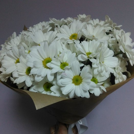 """DAISY"": flowers to order Flowwow"