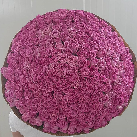 351 розовая роза : букеты цветов на заказ Flowwow