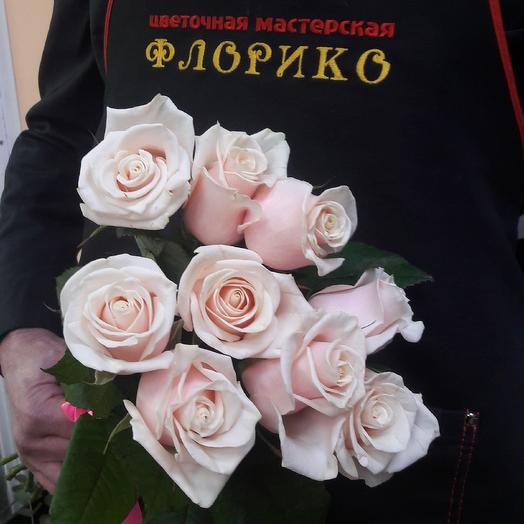 Чайная роза  9: букеты цветов на заказ Flowwow
