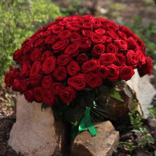 101 красная роза Ред Наоми