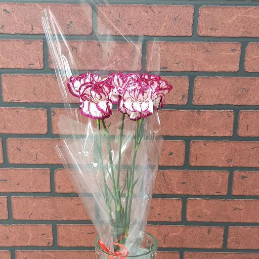Гвоздика: букеты цветов на заказ Flowwow
