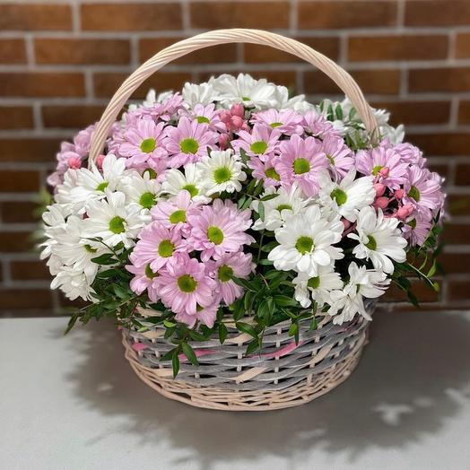 Basket Of Chrysanthemum Daisy