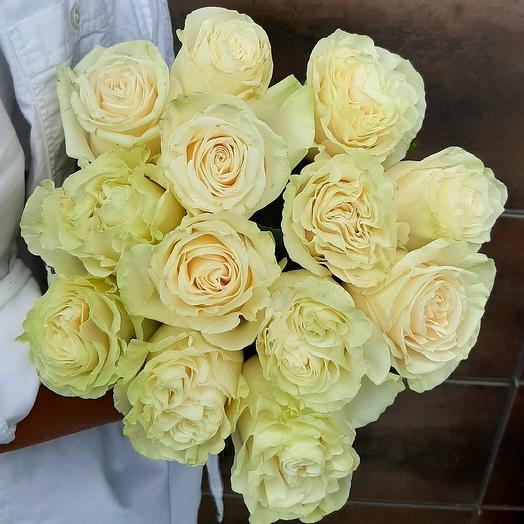Монобукет Mondial роза одноголовая 60 см — 13 шт под ленту