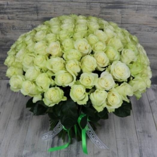 101шт роз