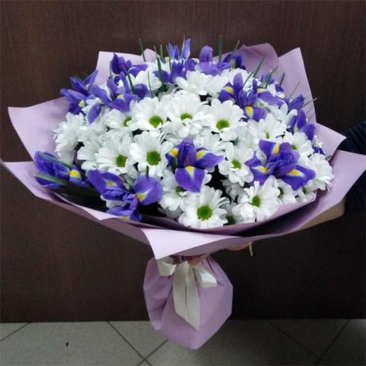 lilac velvet