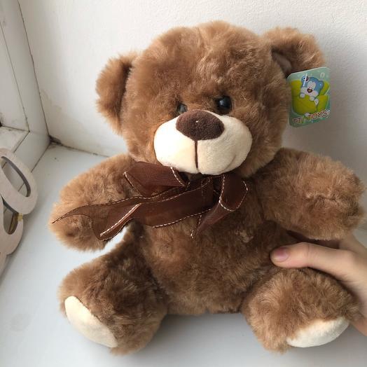 Светло-коричневый медведь