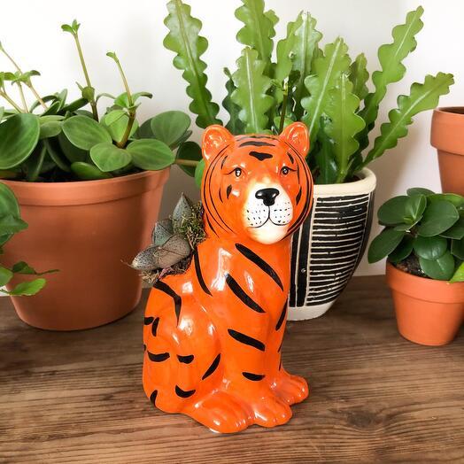 Фигурка Тигр с эхиверией