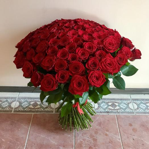 Букет красных роз (101 шт): букеты цветов на заказ Flowwow