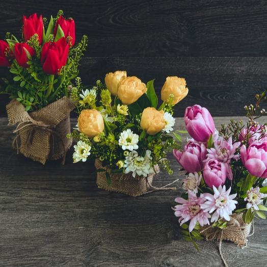 Тюльпан в мешочке: букеты цветов на заказ Flowwow