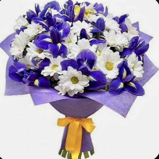 Букет из хризантемы кустовой и ирисы: букеты цветов на заказ Flowwow