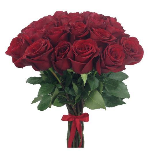 Охапка 25 красных роз Эксплорер 60 см