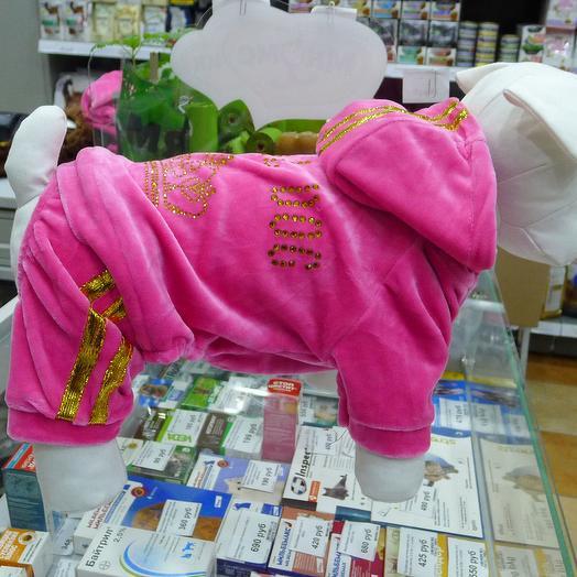 Велюровый костюм для мелких пород собак, розовый