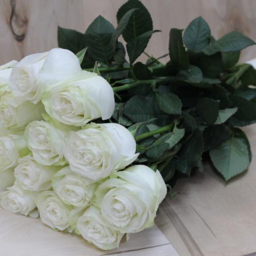 """Белые розы """"Эквадор"""""""