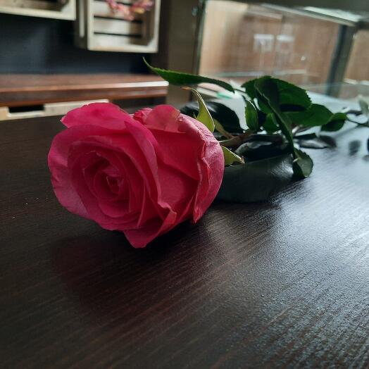 Розы Стиллето Эквадор