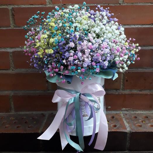 Цветы в коробке. Радужная гипсофила