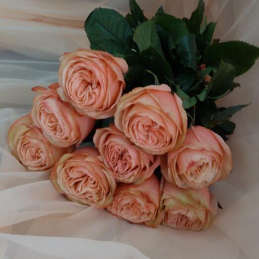 Монобукет из пионовидной розы Кахала