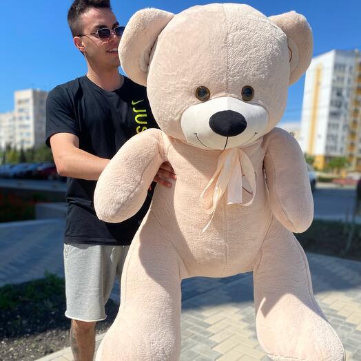 Медведь Джони