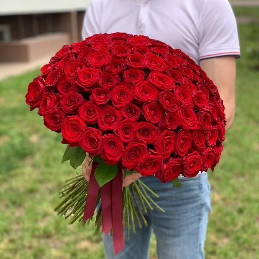 101 роза красная  50см «Red-Naoml»