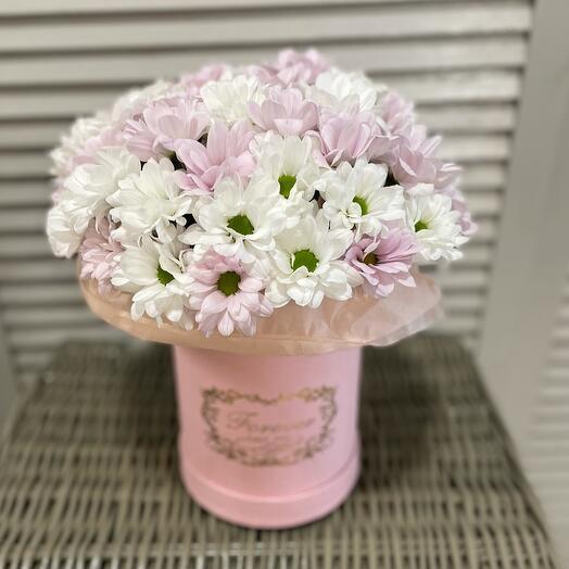 Цветы в коробке Хризантемы
