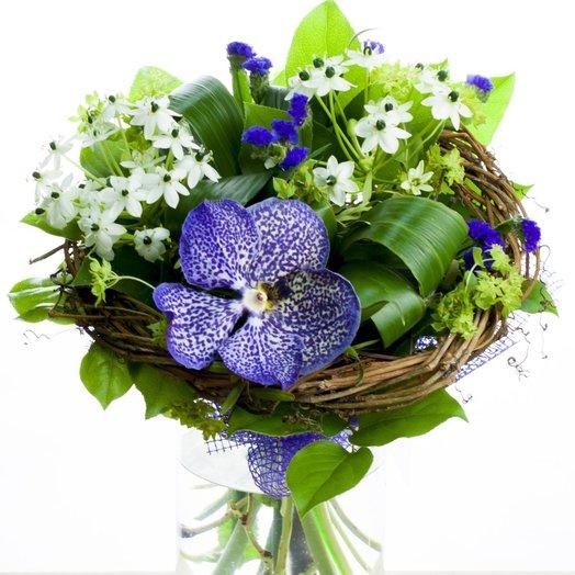 Букет на каркасе с вандой и орнитогалумами: букеты цветов на заказ Flowwow