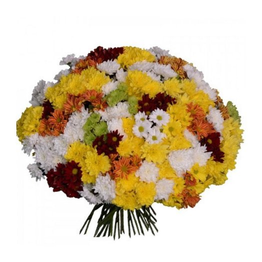 51 кустовая хризантема микс: букеты цветов на заказ Flowwow