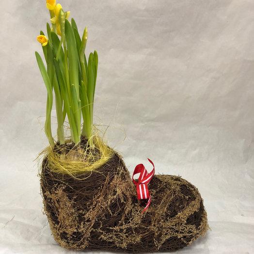 Композиция «Валенок с нарциссами»: букеты цветов на заказ Flowwow