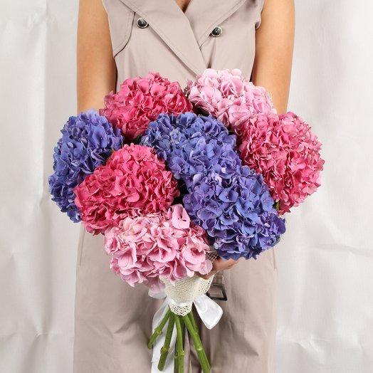 9 гортензий: букеты цветов на заказ Flowwow