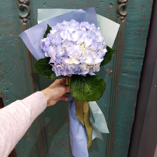 Гортензия (моно ): букеты цветов на заказ Flowwow