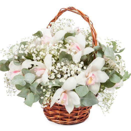 """""""Незабудка"""" 7  орхидей: букеты цветов на заказ Flowwow"""