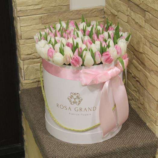 До 99 голландских пионовидных тюльпанов в белой коробке: букеты цветов на заказ Flowwow