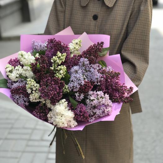 Супер сирень по супер цене: букеты цветов на заказ Flowwow