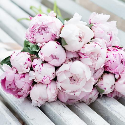 "Букет ""19 Пион"": букеты цветов на заказ Flowwow"