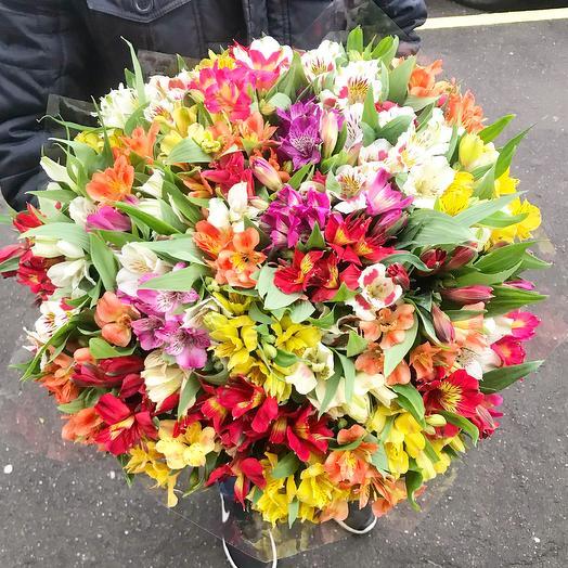 101 альстромерия: букеты цветов на заказ Flowwow