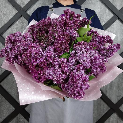 Расцвела сирень: букеты цветов на заказ Flowwow
