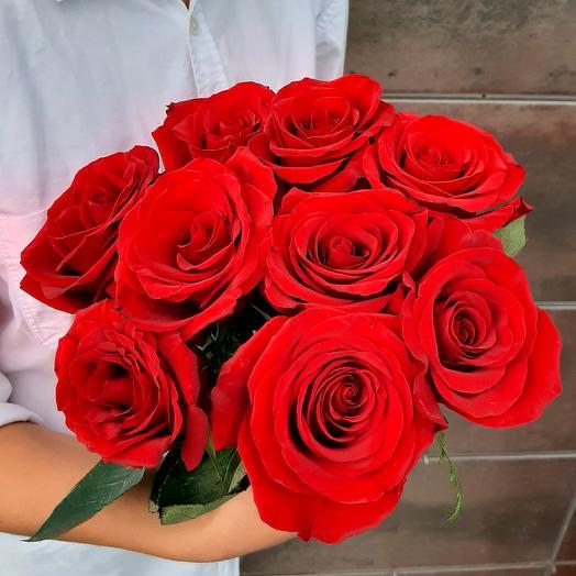 Монобукет Explorer роза одноголовая 60 см — 9 шт под ленту