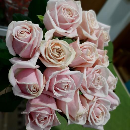 Роза нежная 15 шт 60см