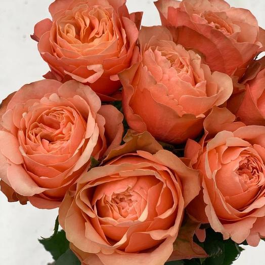Букет из необычной розы Кахала