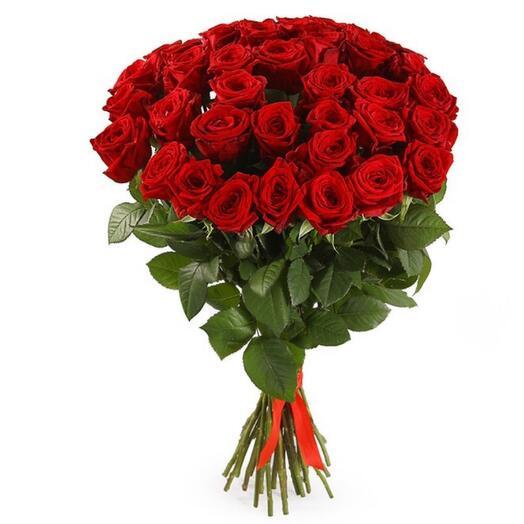 Букет 35 бордовых роз 70 см