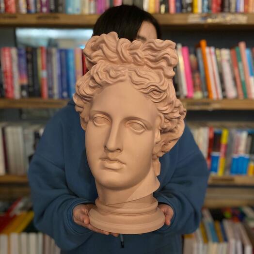 Гипсовая голова Аполлона, розовая