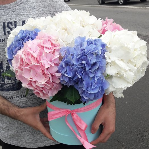 Букет из гортензия: букеты цветов на заказ Flowwow