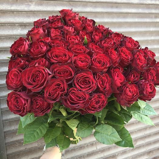 59 красных роз Кения: букеты цветов на заказ Flowwow